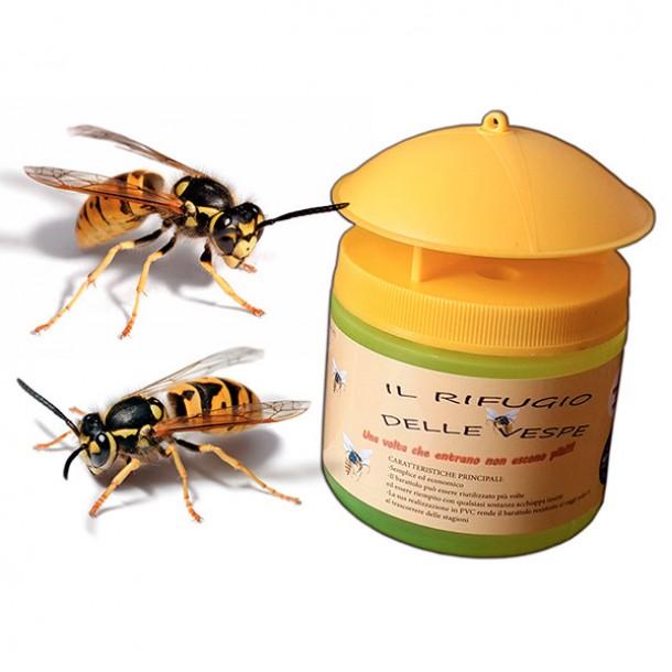 Il rifugio delle vespe